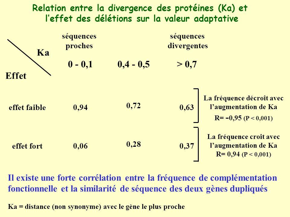 Relation entre la divergence des protéines (Ka) et