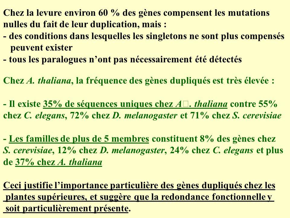 Chez la levure environ 60 % des gènes compensent les mutations