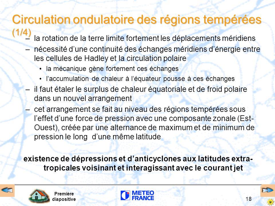 Circulation ondulatoire des régions tempérées (1/4)