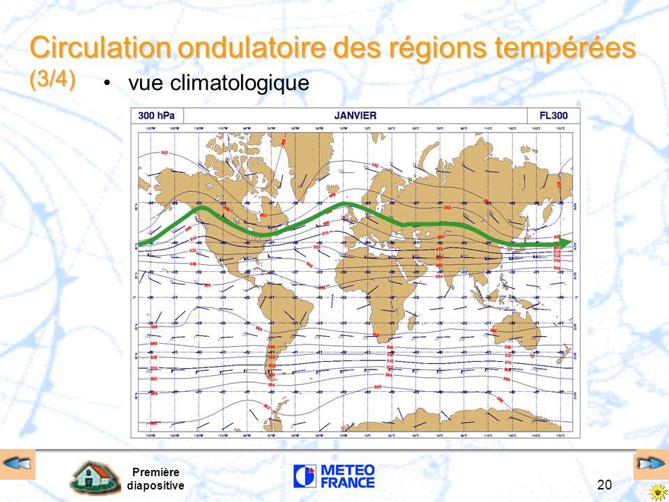Circulation ondulatoire des régions tempérées (3/4)