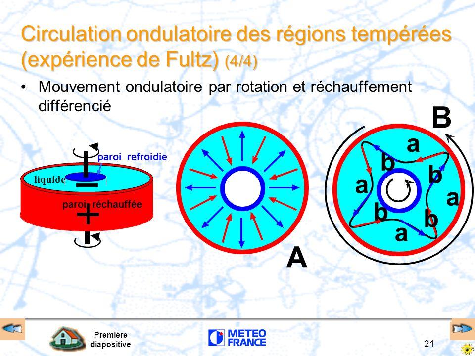 Circulation ondulatoire des régions tempérées (expérience de Fultz) (4/4)