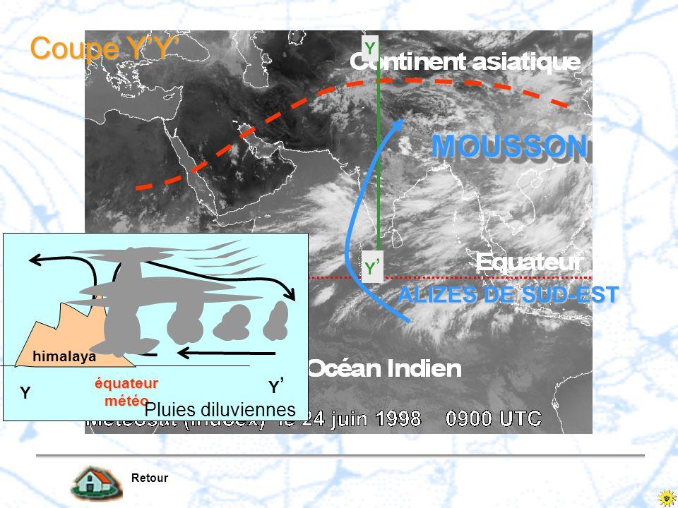 Coupe Y'Y' MOUSSON ALIZES DE SUD-EST Pluies diluviennes Y Y' Y' Y