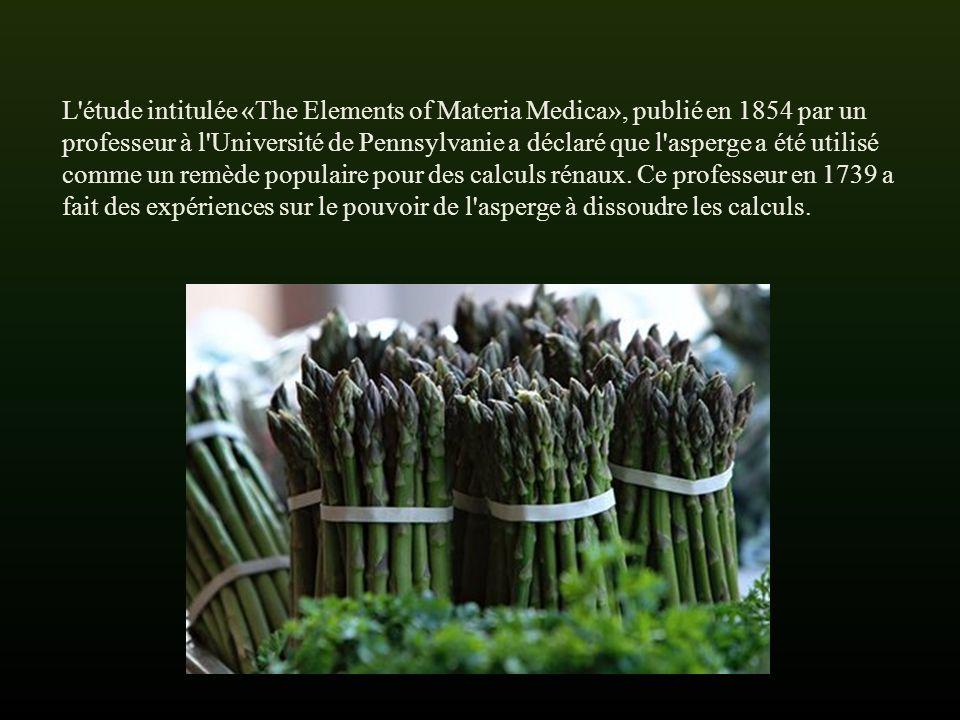 L étude intitulée «The Elements of Materia Medica», publié en 1854 par un professeur à l Université de Pennsylvanie a déclaré que l asperge a été utilisé comme un remède populaire pour des calculs rénaux.