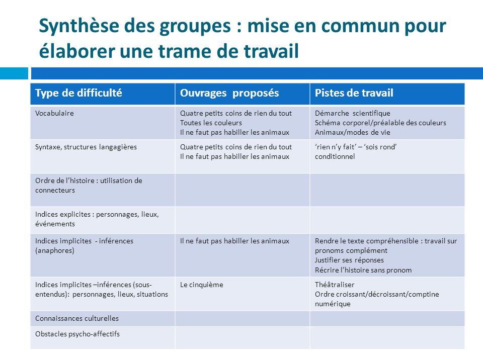 Synthèse des groupes : mise en commun pour élaborer une trame de travail
