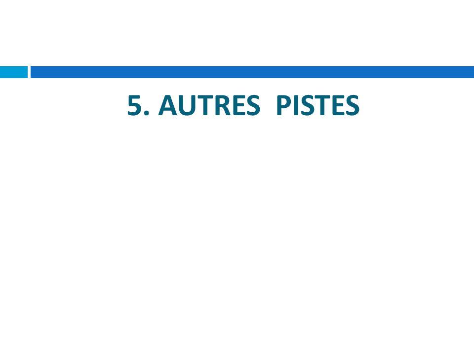 5. AUTRES PISTES