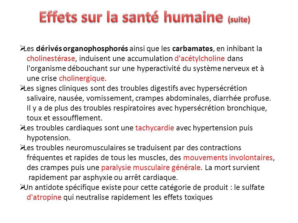 Effets sur la santé humaine (suite)