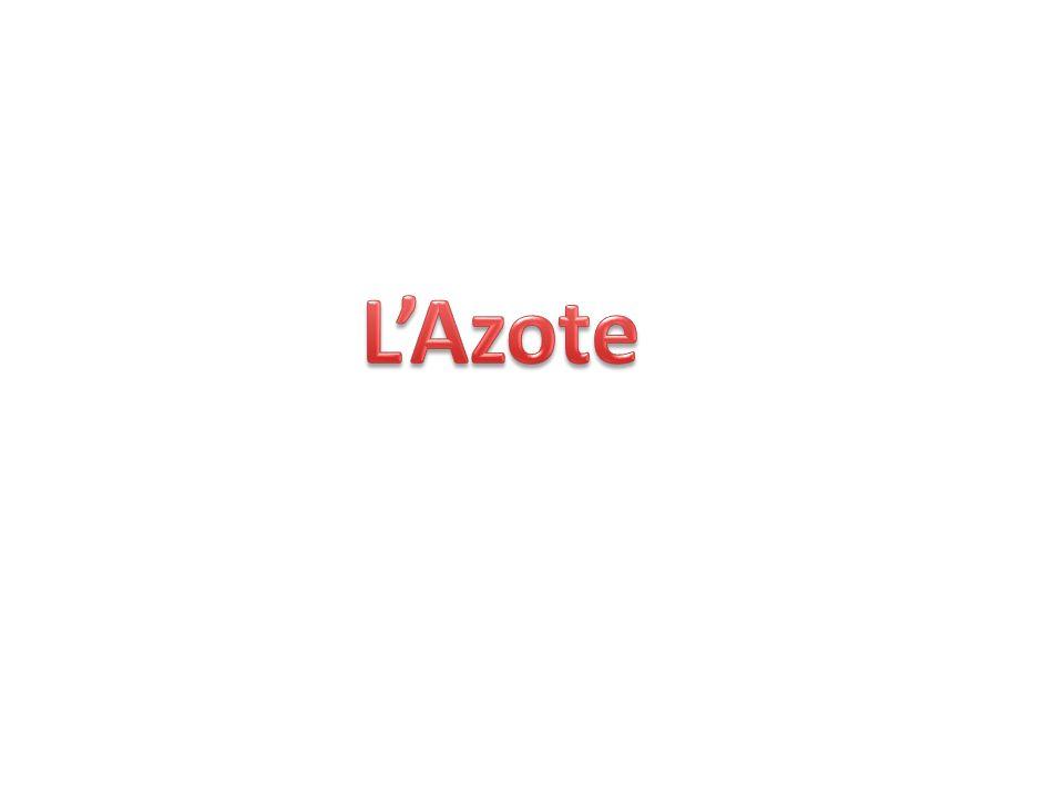 L'Azote