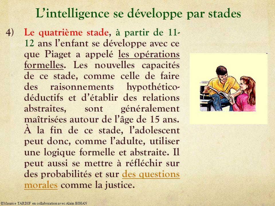 L'intelligence se développe par stades