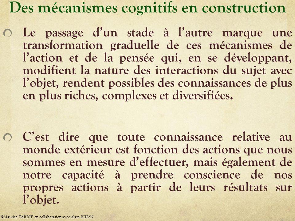 Des mécanismes cognitifs en construction