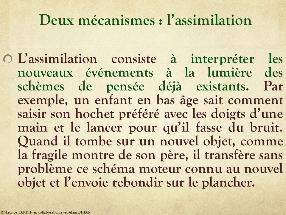 Deux mécanismes : l'assimilation