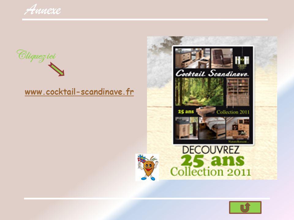 Annexe Cliquez ici www.cocktail-scandinave.fr