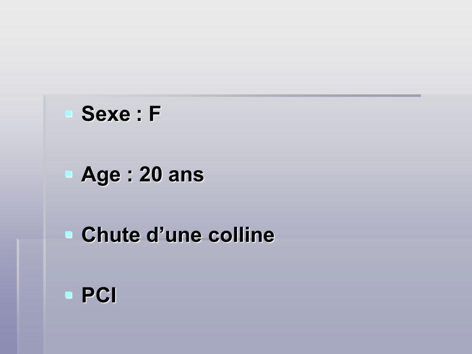 Sexe : F Age : 20 ans Chute d'une colline PCI