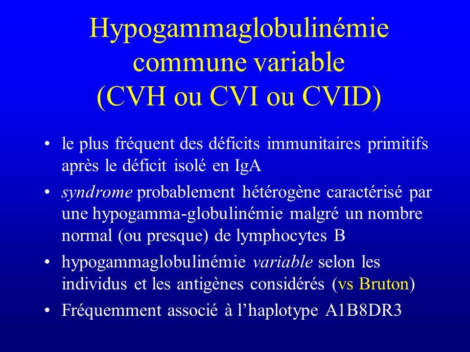 Hypogammaglobulinémie commune variable (CVH ou CVI ou CVID)