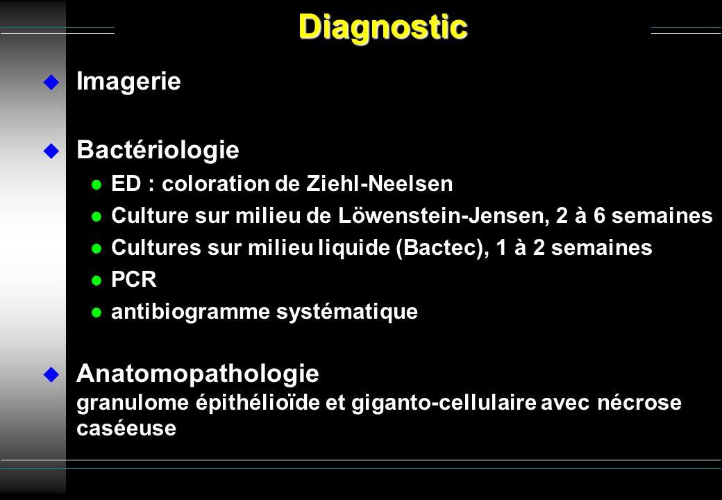 Diagnostic Imagerie Bactériologie