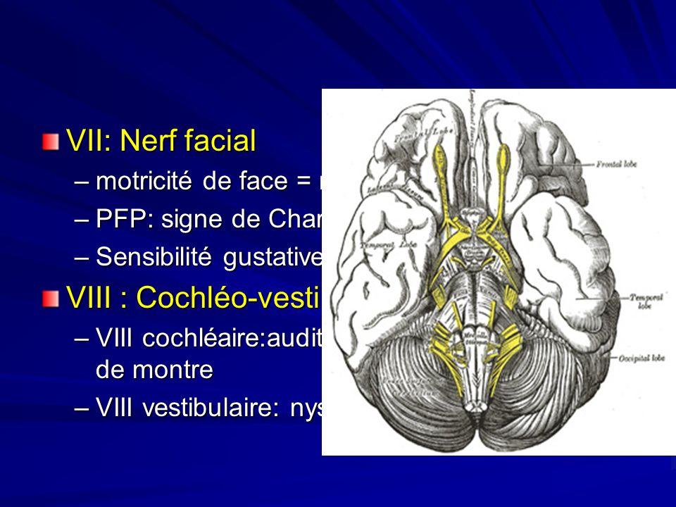 VIII : Cochléo-vestibulaire