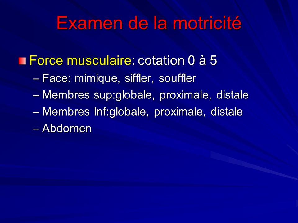 Examen de la motricité Force musculaire: cotation 0 à 5
