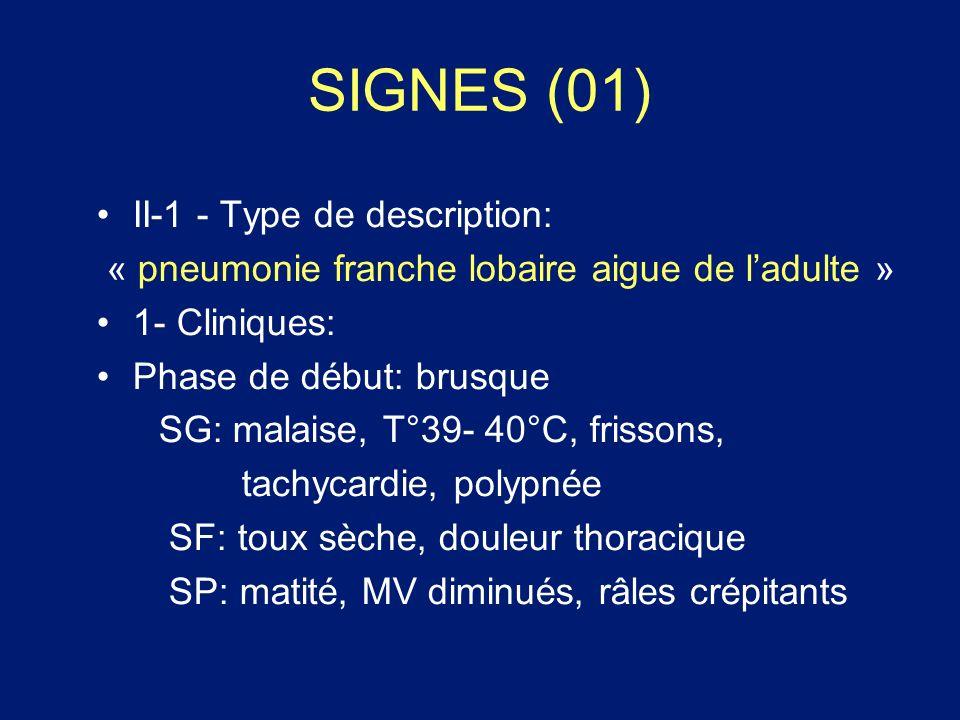 SIGNES (01) II-1 - Type de description:
