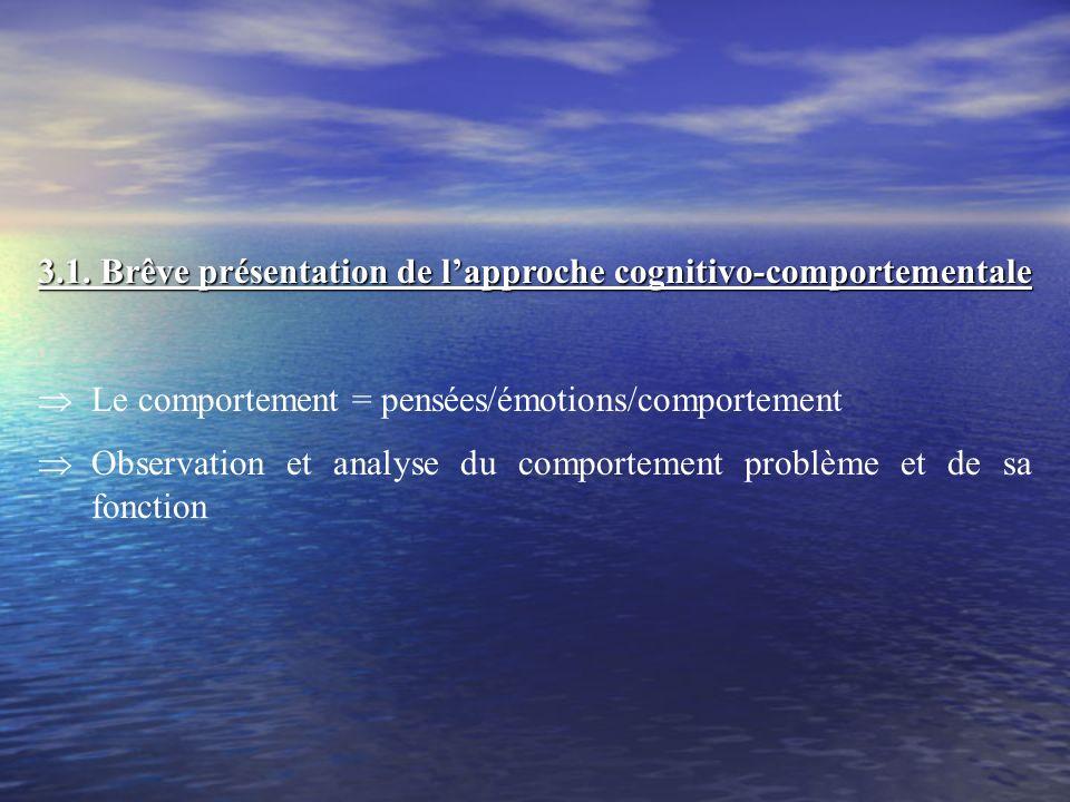 3.1. Brêve présentation de l'approche cognitivo-comportementale