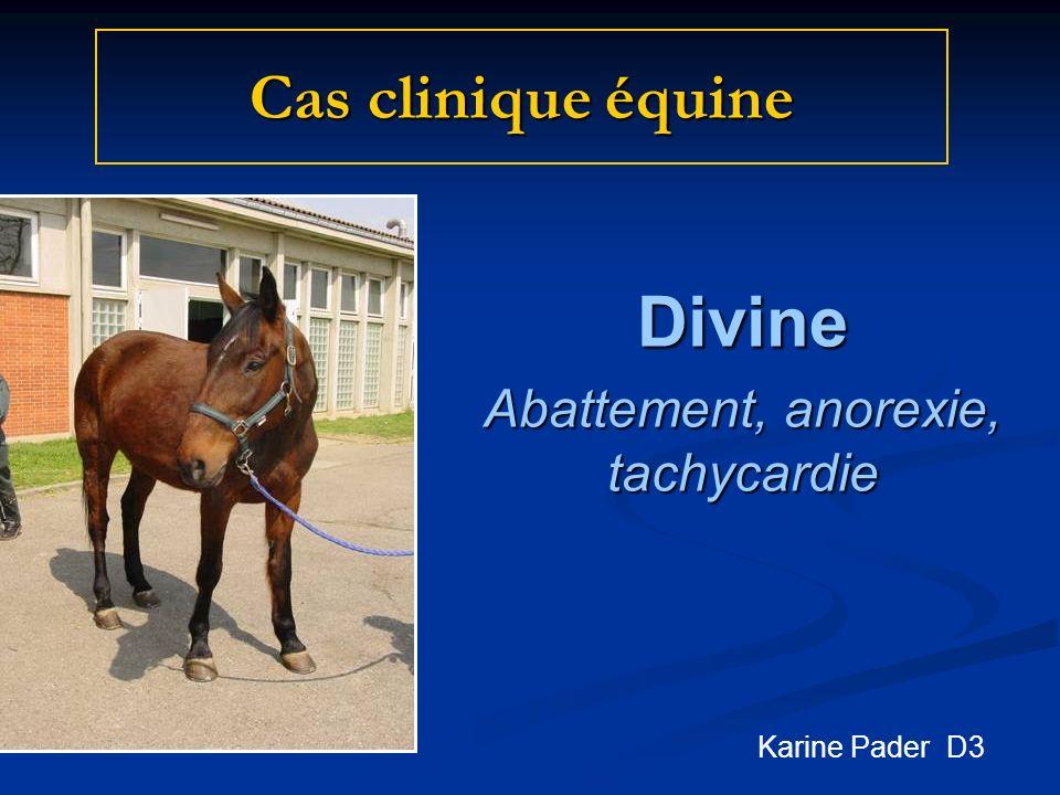 Divine Abattement, anorexie, tachycardie