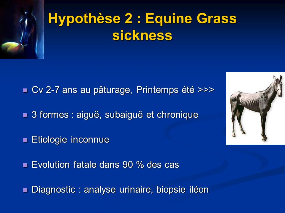 Hypothèse 2 : Equine Grass sickness