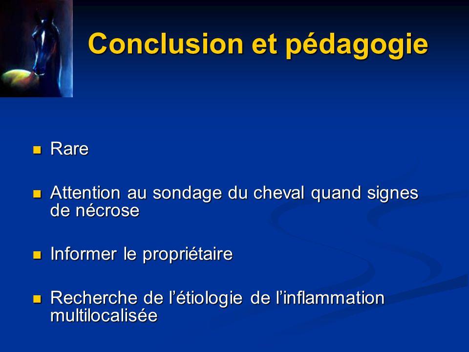 Conclusion et pédagogie