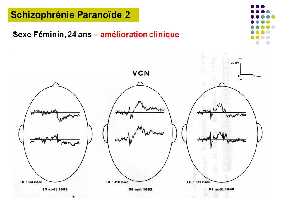 Schizophrénie Paranoïde 2