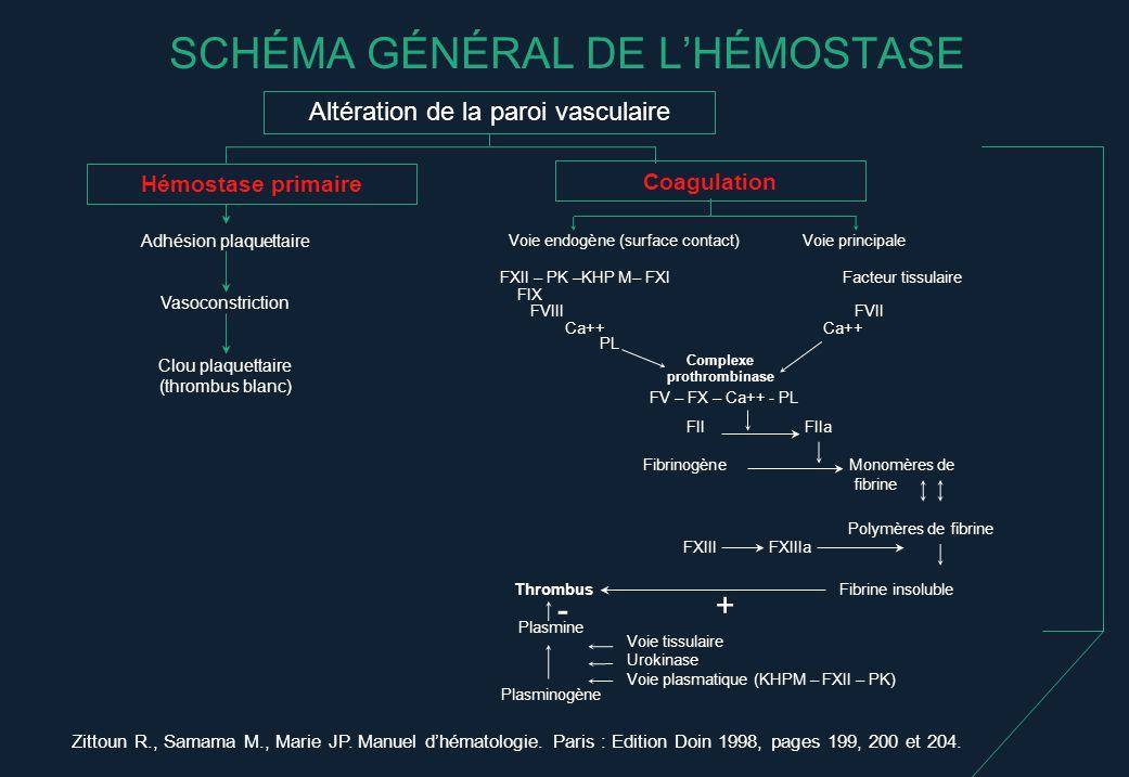 SCHÉMA GÉNÉRAL DE L'HÉMOSTASE