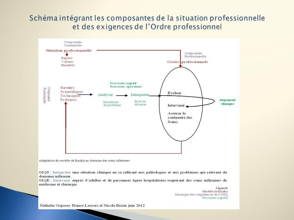 Schéma intégrant les composantes de la situation professionnelle et des exigences de l'Ordre professionnel