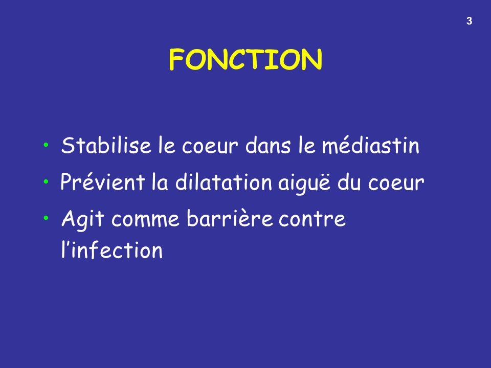 FONCTION Stabilise le coeur dans le médiastin
