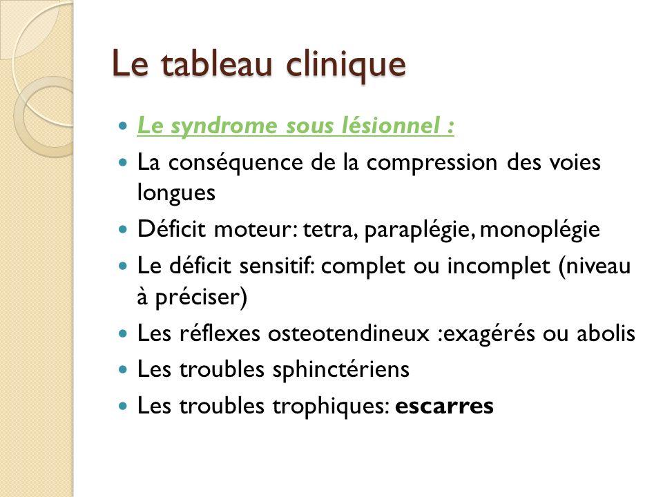 Le tableau clinique Le syndrome sous lésionnel :