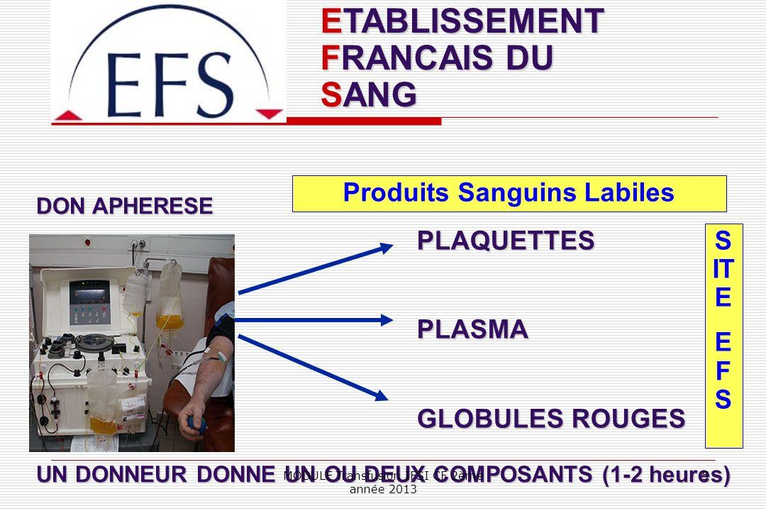 Produits Sanguins Labiles