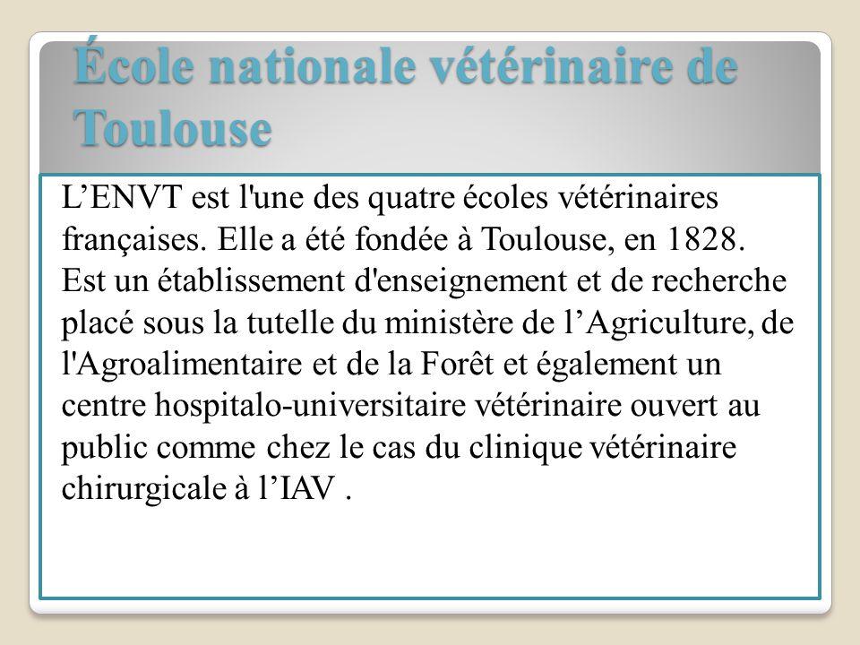 École nationale vétérinaire de Toulouse
