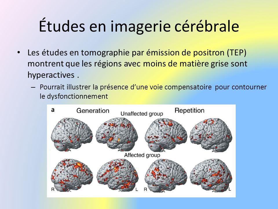 Études en imagerie cérébrale