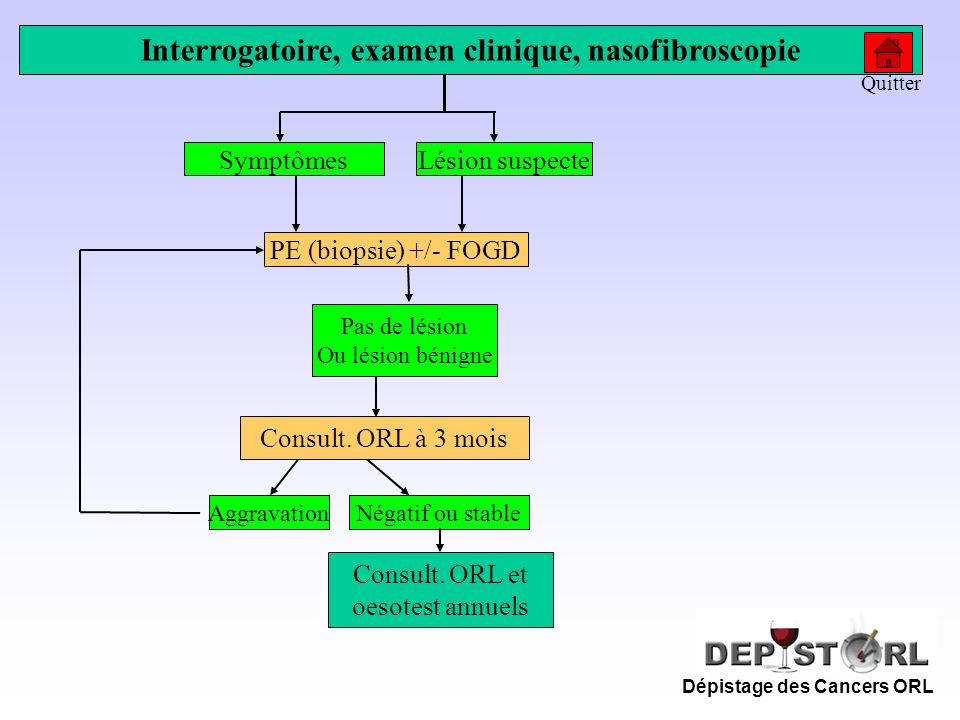 Interrogatoire, examen clinique, nasofibroscopie