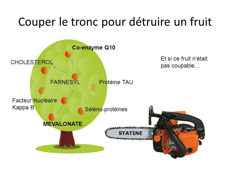 Couper le tronc pour détruire un fruit