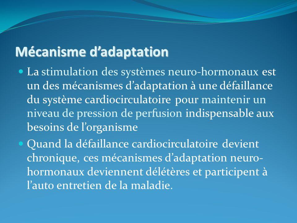 Mécanisme d'adaptation
