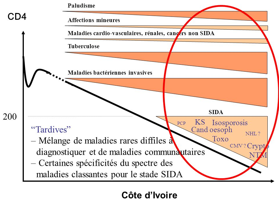 Paludisme CD4. Affections mineures. Maladies cardio-vasculaires, rénales, cancers non SIDA. Tuberculose.