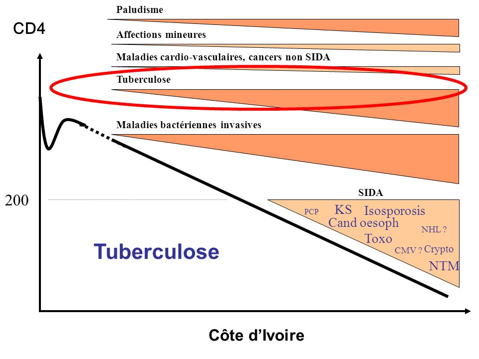 Tuberculose CD4 200 Côte d'Ivoire KS Isosporosis Cand oesoph Toxo NTM