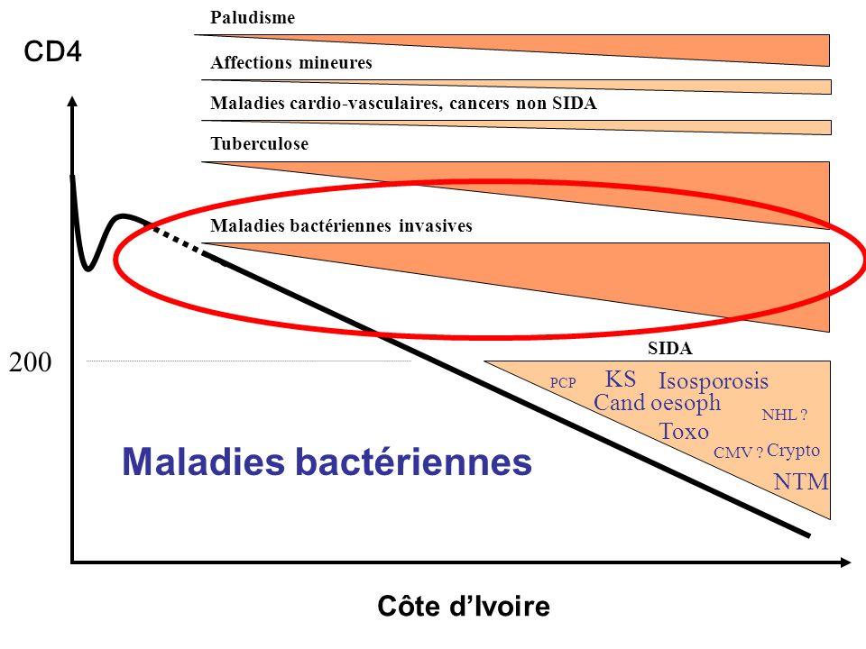Maladies bactériennes