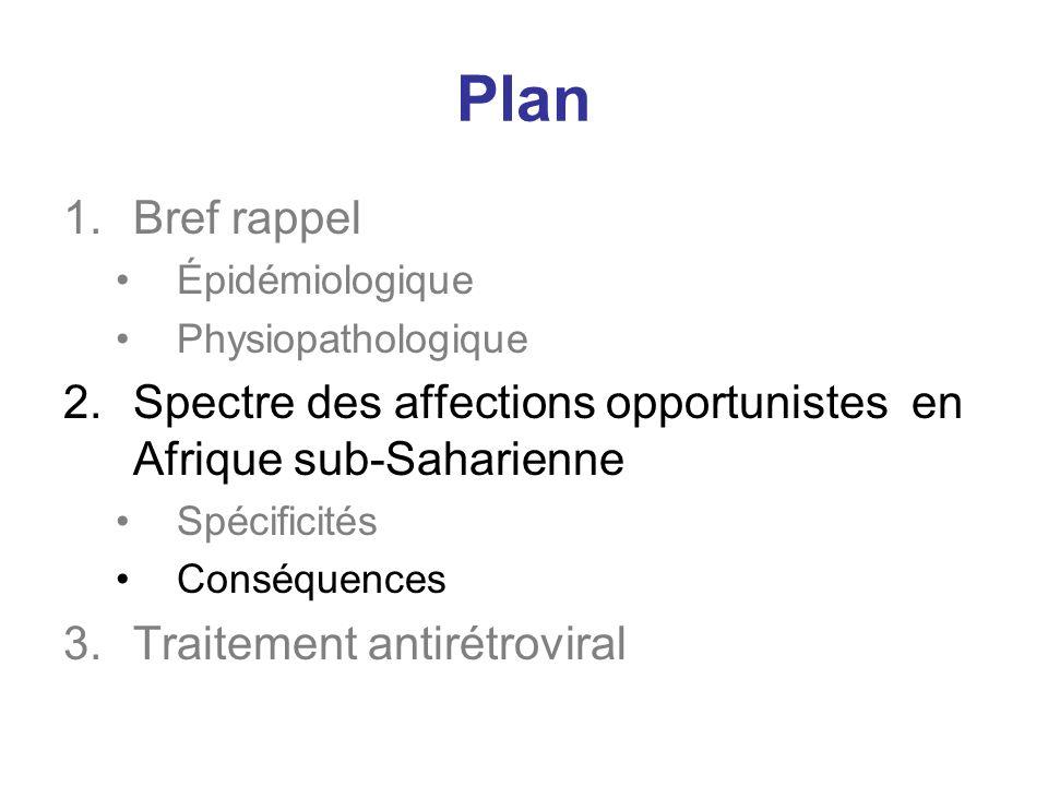 Plan Bref rappel. Épidémiologique. Physiopathologique. Spectre des affections opportunistes en Afrique sub-Saharienne.