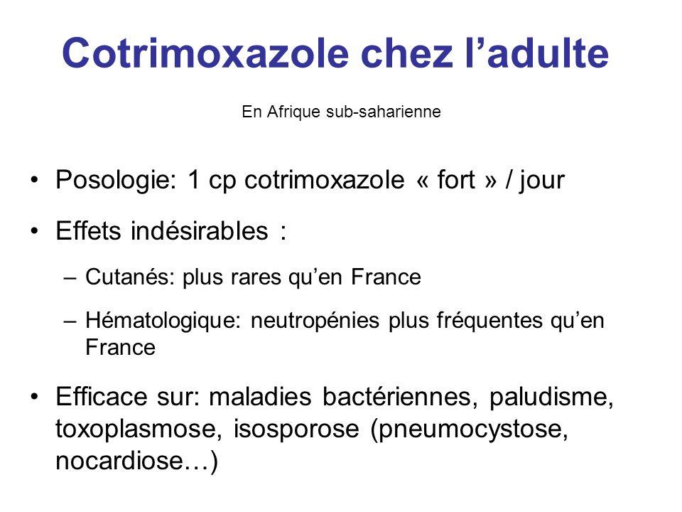 Cotrimoxazole chez l'adulte En Afrique sub-saharienne