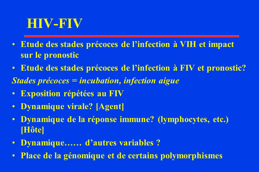 HIV-FIV Etude des stades précoces de l'infection à VIH et impact sur le pronostic. Etude des stades précoces de l'infection à FIV et pronostic