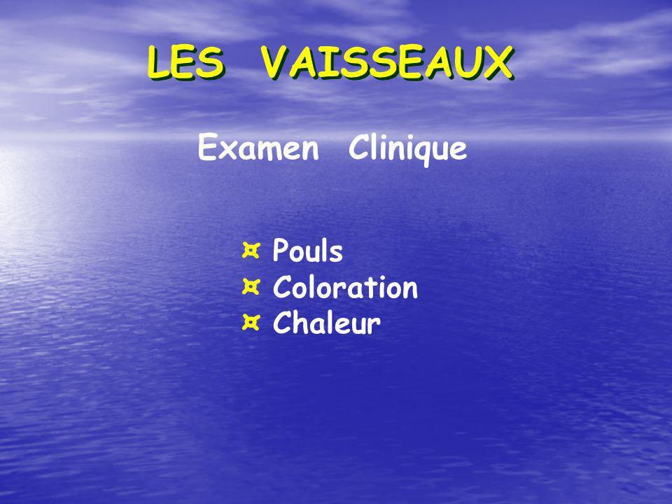 LES VAISSEAUX Examen Clinique ¤ Pouls ¤ Coloration ¤ Chaleur