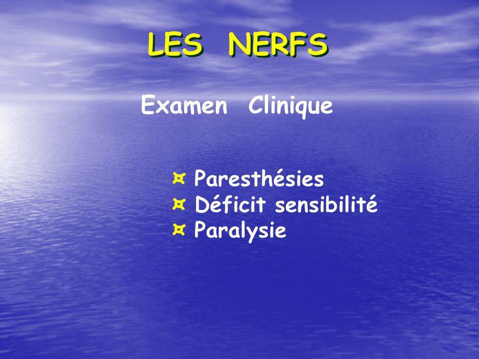 LES NERFS Examen Clinique ¤ Paresthésies ¤ Déficit sensibilité