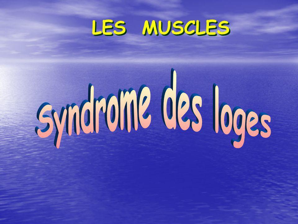 LES MUSCLES Syndrome des loges