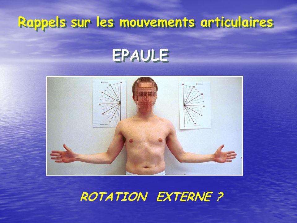 Rappels sur les mouvements articulaires