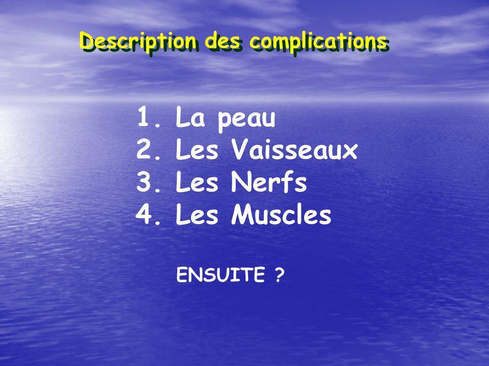 La peau 2. Les Vaisseaux 3. Les Nerfs 4. Les Muscles