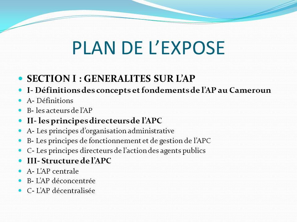 PLAN DE L'EXPOSE SECTION I : GENERALITES SUR L'AP