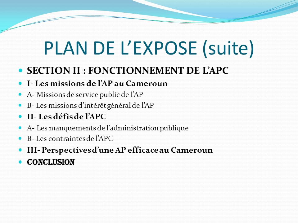 PLAN DE L'EXPOSE (suite)