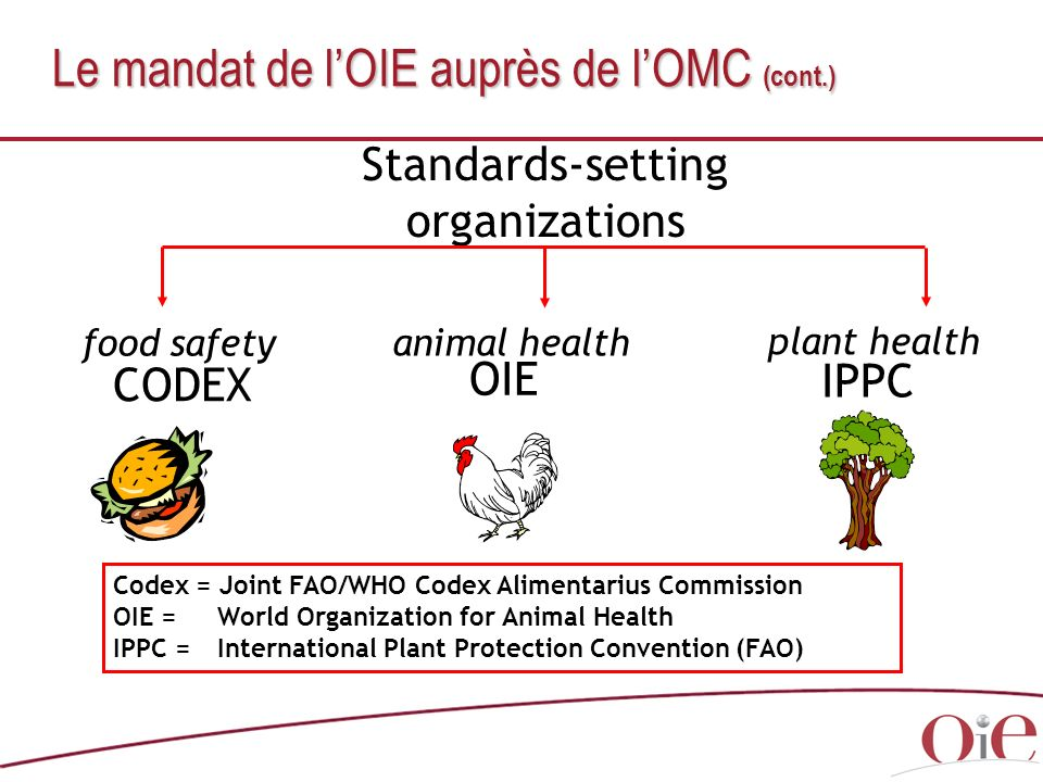 Le mandat de l'OIE auprès de l'OMC (cont.)